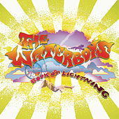 Book Of Lightning von The Waterboys