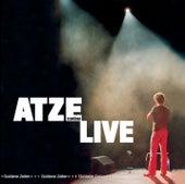 Play & Download Goldene Zeiten by Atze Schröder | Napster