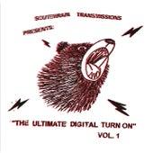 The Ultimate Digital Turn On Vol. 1 von Various Artists