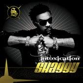Intoxication von Shaggy