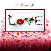 A Promise of Love by Midori