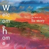 Welcome Home:  The Best Of Liz Story von Liz Story