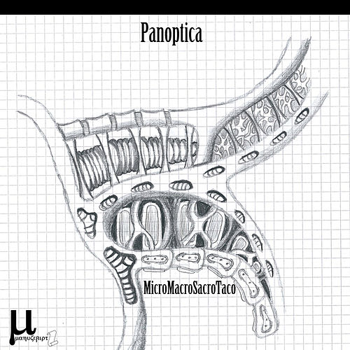 Play & Download MicroMacroSacroTaco by Panoptica | Napster