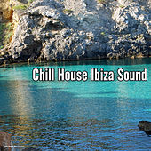 Play & Download Chill House Ibiza Sound by Various Artists | Napster