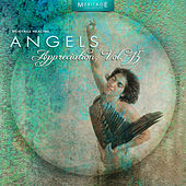 Meritage Healing: Angels (Appreciation), Vol. 15 by Various Artists