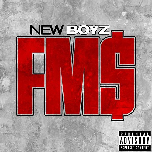 Play & Download Fm$ by New Boyz | Napster