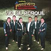 Play & Download No Sé Porque by Conjunto Primavera | Napster