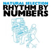 Play & Download Rhythm By Numbers by Natural Selection | Napster
