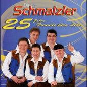 Play & Download 25 Jahre...Freunde fürs Leben by Die Schmalzler | Napster