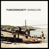 Dandilion by Funkommunity
