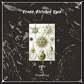 Play & Download Decomposition by Cross Stitched Eyes | Napster