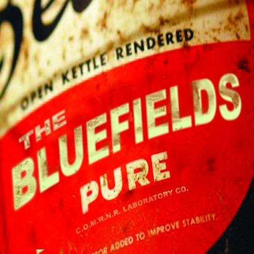 Play & Download Pure by Blue Fields | Napster