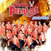 Play & Download Secreto by Banda Pelillos | Napster