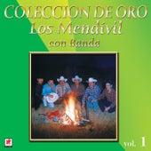 Play & Download Los Mendevil, Coleccion de Oro, Vol. 1 by Los Mendivil | Napster