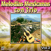 Melodias Mexicanas Con Trio, Vol.2 by Various Artists