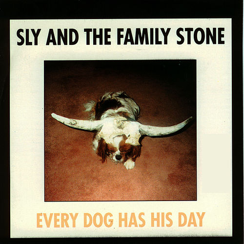 Play & Download Every Dog Has His Day by Sly & the Family Stone | Napster