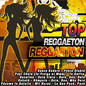 Play & Download Top Reggaeton by Various Artists | Napster