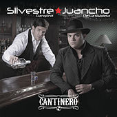 Cantinero by Silvestre Dangond