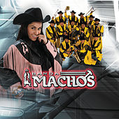 Play & Download El Próximo Tonto by Banda Machos | Napster
