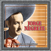 Play & Download Tesoros De Coleccion - Jorge Negrete by Various Artists | Napster