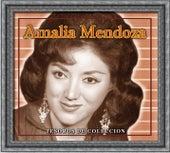 Tesoros De Coleccion - Amalia Mendoza by Various Artists