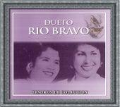 Play & Download Tesoros De Coleccion - Dueto Rio Bravo by Dueto Rio Bravo | Napster