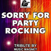 Sorry for Party Rocking - Tribute to LMFAO by Music Magnet