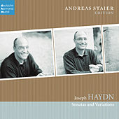 Joseph Haydn: Sonatas by Andreas Staier
