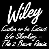 Evolve or be Extinct B/W Skanking - The 2 Bears Remix by Wiley