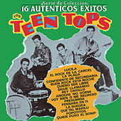 Play & Download Serie De Colección 16 Autenticos Exitos by Los Teen Tops | Napster