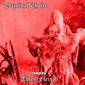 Play & Download Totes Fleisch by Terminal Choice | Napster