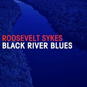 Play & Download Black River Blues by Roosevelt Sykes | Napster