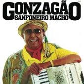 Sanfoneiro Macho by Various Artists