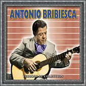 Play & Download Tesoros de Coleccion - Antonio Bribiesca by Antonio Bribiesca | Napster
