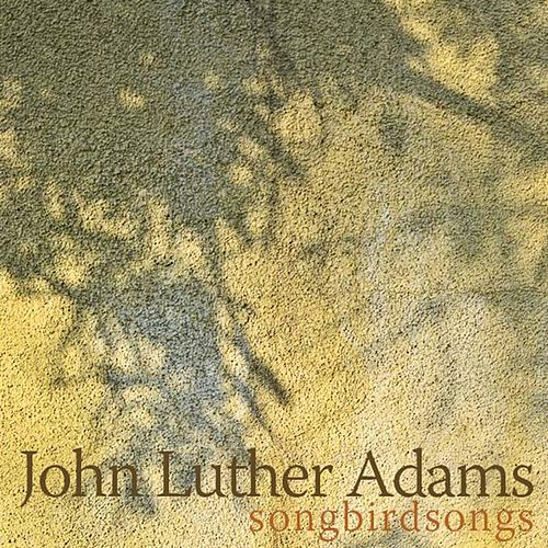 Songbirdsongs by John Luther Adams
