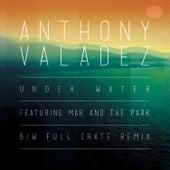 Under Water by Anthony Valadez