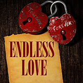 Play & Download Endless Love by Music-Themes | Napster