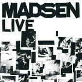 Das Fritz Radio Konzert von Madsen