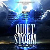 Play & Download Quiet Storm Riddim by Various Artists | Napster