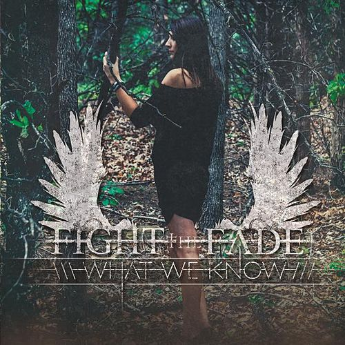Play & Download What We Know by Fight The Fade | Napster