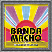 Play & Download Tesoros De Coleccion - Banda Macho by Banda Machos | Napster