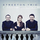 Elation by Streeton Trio