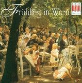 Spring in Vienna von Various Artists