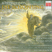 Haydn: The Creation von Various Artists