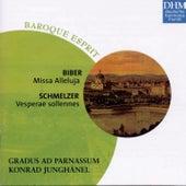 Biber, Schmelzer: Missa Alleluija/Vesperae Sollennes by Konrad Junghänel
