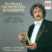 Mudge, Lazzari, Telemann, Franceschini, Mozart L., Vivaldi & Haydn: Famous Trumpet Concertos by Various Artists