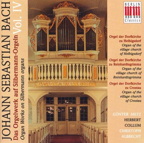 BACH, J.S.: Organ Music on Silbermann Organs, Vol. 4 - BWV 131a, 528, 532, 539, 542, 547, 549, 565, 576, 587, 590, 653, 714 … (Metz, Collum, Albrecht) by Various Artists