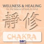 Play & Download Wellness & Healing ..... Chakra by Ravi Chawla | Napster