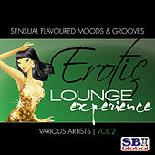 Erotic Lounge Experience Vol. 2 by Various Artists