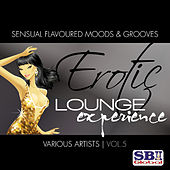 Play & Download Erotic Lounge Experience Vol. 5 by Various Artists | Napster
